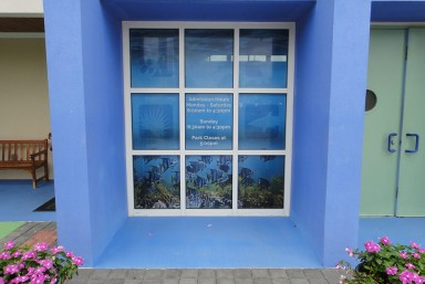 Window Graphics/One-way Visions