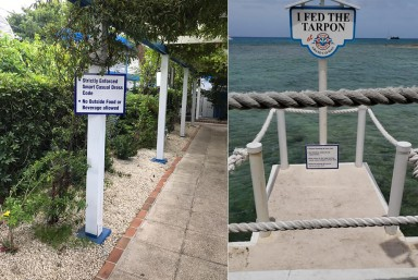 Planning & Regulatory Signs